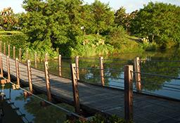 东胜景观吊桥